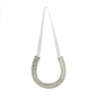 Silver Plated Horse Shoe With Engraving Plate
